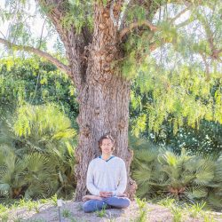 Meditating Tree_edited